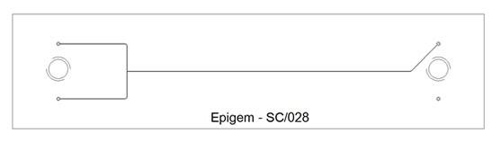 T – Branch  Channel Chip – Epigem SC/028