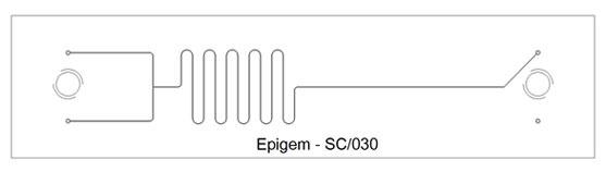 T – Branch  Short Delay Chip – Epigem SC/030