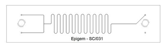 T – Branch  Long Delay Chip – Epigem SC/031